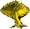 Hibernia Baum
